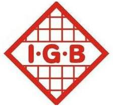 IGB Automotive Ltd. Logo